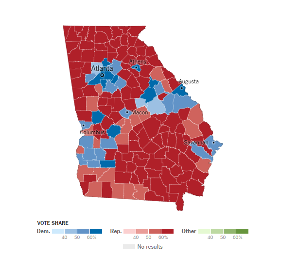 how-georgia-voted